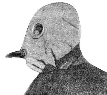 английский шлем-маска